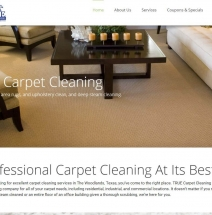 true-carpet-clean-project