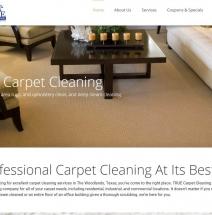 true-carpet-clean-project